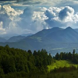 Munții Bihorului
