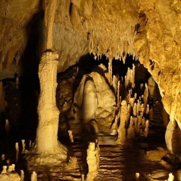 Peștera Urșilor